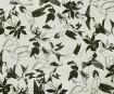 Nepaali paber 51x76cm Humming Bird Black on Natural