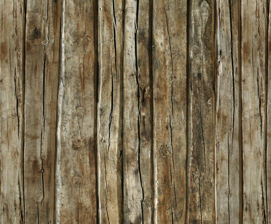 Kartong pildiga Ursus 49.5x68cm/300g Wood