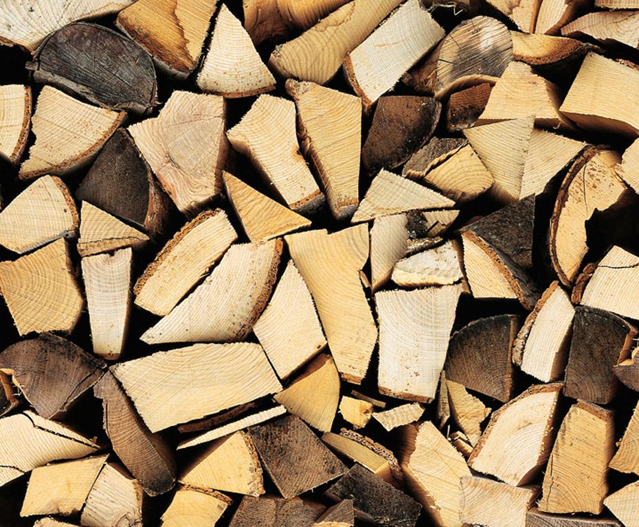 Kartong pildiga Ursus 49.5x68cm/300g Logs