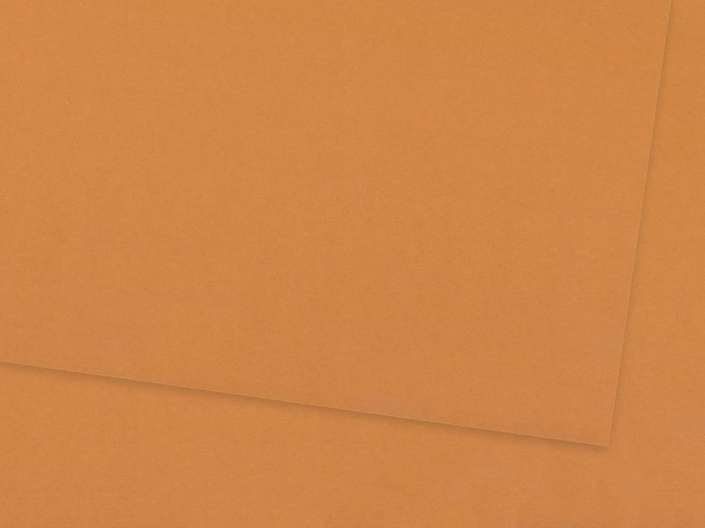 Värviline paber Ursus A4/130g 75 fawn brown