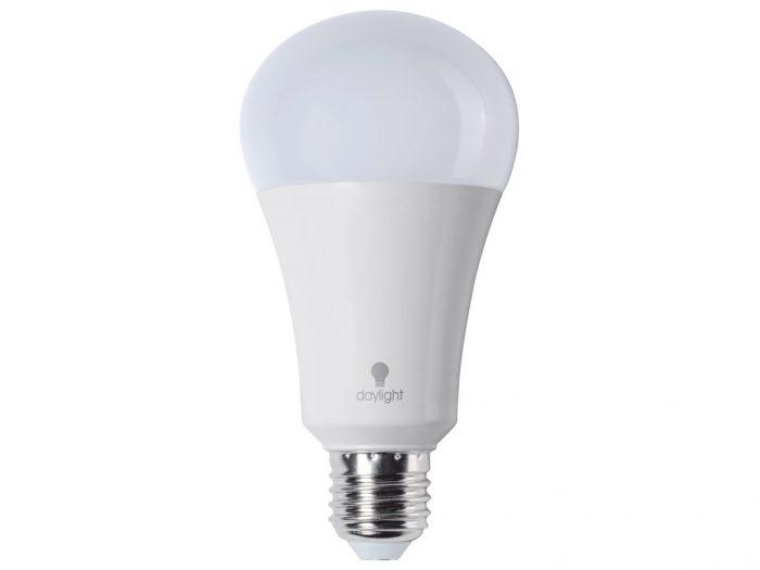 Lamp LED Daylight (päevavalgus) E27